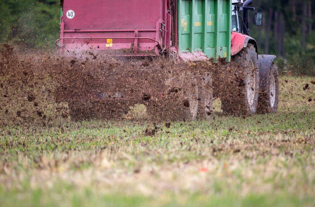 Düngung in der Landwirtschaft – nicht so problematisch wie bisher gedacht? Foto: dpa