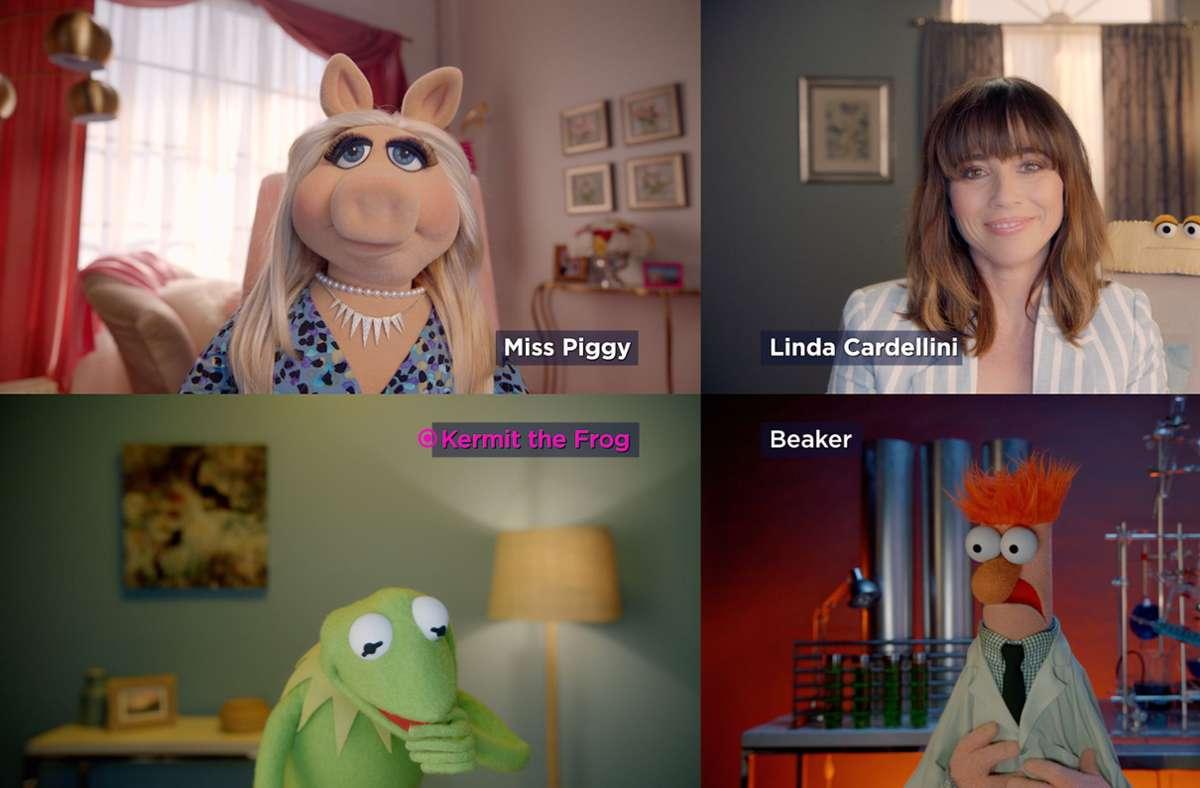 Auch die Muppets gehen mit der Zeit und nutzen nun  Videokonferenzen. Foto: dpa