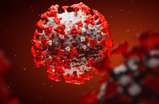 Haben Viren etwas gegen uns?