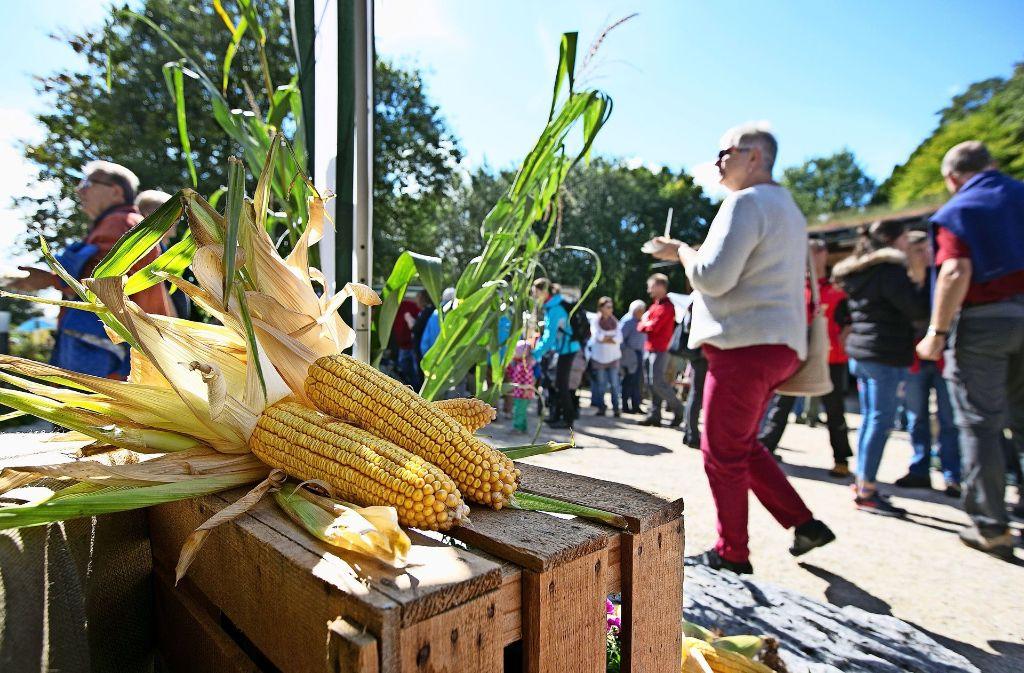 Der  Bauernmarkt lockt alljährlich viele Besucher an. Foto: Horst Rudel