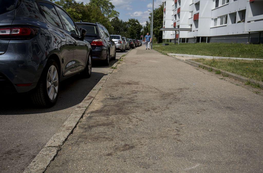 Der Tatort am Fasanenhof einen Tag nach der brutalen Tötung. Foto: Leif Piechowski