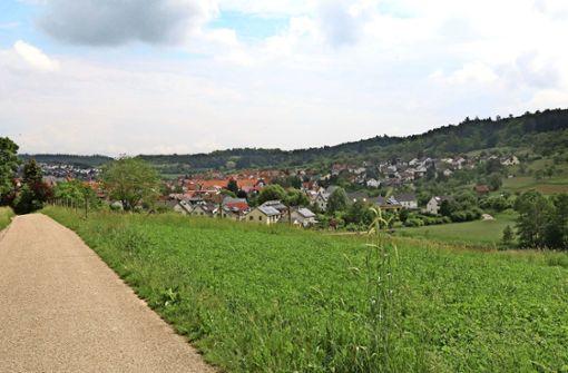Bei Windkraft ist Wimsheim außen vor