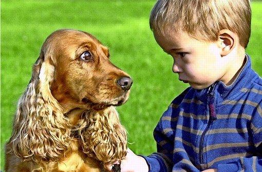 Schau mir in die Augen, Bello!