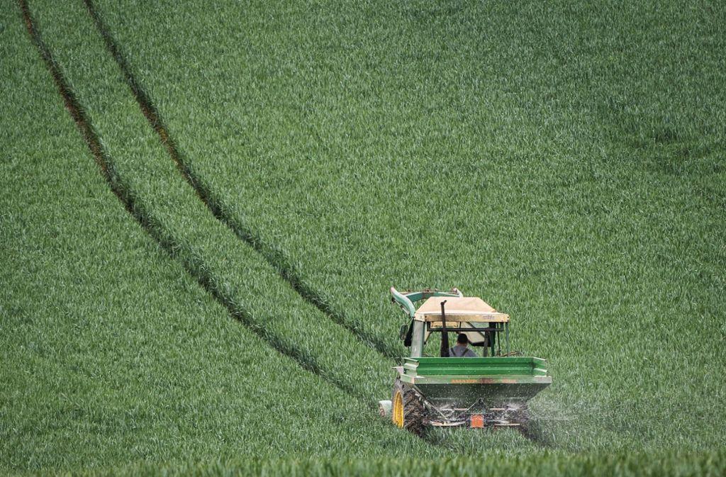 Der Landesbauernverband warnt vor einer Verschärfung der Gesetzeslage im Düngerecht. Foto: dpa