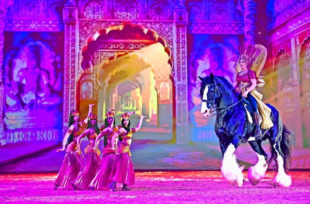 Prachtvolle Pferde.    Foto: Apassionata