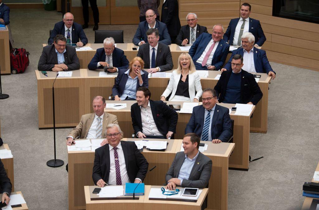 Zerstrittene Fraktion: die AfD-Abgeordneten im Landtag Foto: dpa/Marijan Murat