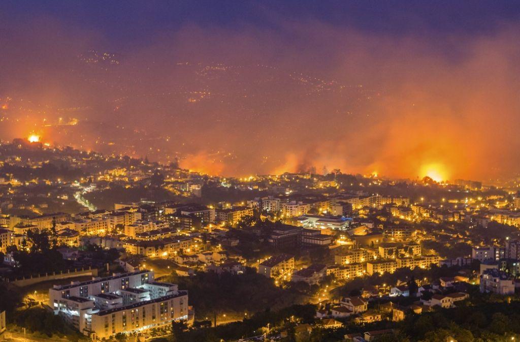 Die Waldbrände in Madeira haben ein beängstigendes Ausmaß angenommen. Foto: LUSA