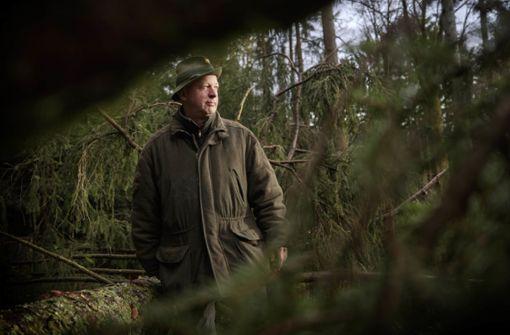 Martin Röhrs ist  ganz wild auf Wald