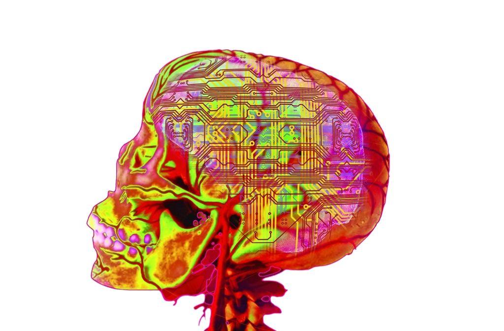 In Heidelberg arbeiten Forscher am Projekt Brainscales: Die Hardware von Computern arbeitet wie das menschliche Gehirn Foto: Mauritius