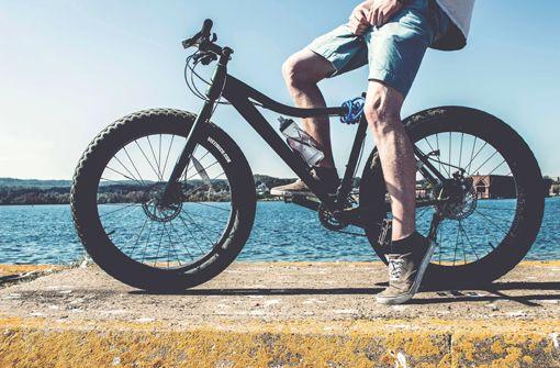 Hollands traumhafte Fahrradstrecke am Meer
