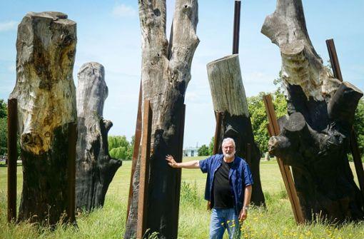 Bizarrer Streit über alte S-21-Bäume