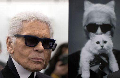 Lagerfelds Katze ist jetzt Multimillionärin