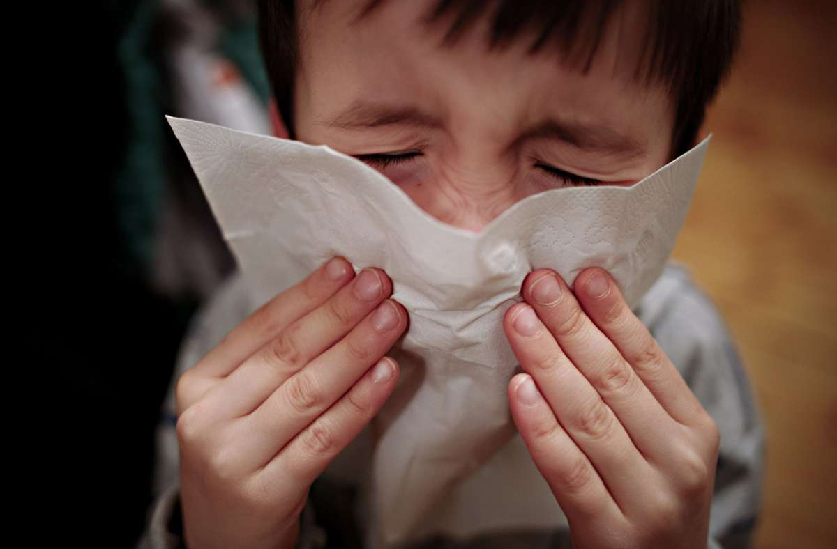 Heuschnupfen, Schnupfen oder Corona? Die Frage, wie mit der Mehrdeutigkeit von Erkältungssymptomen umgegangen wird,  ist politisch brisant. Foto: dpa/Nicolas Armer
