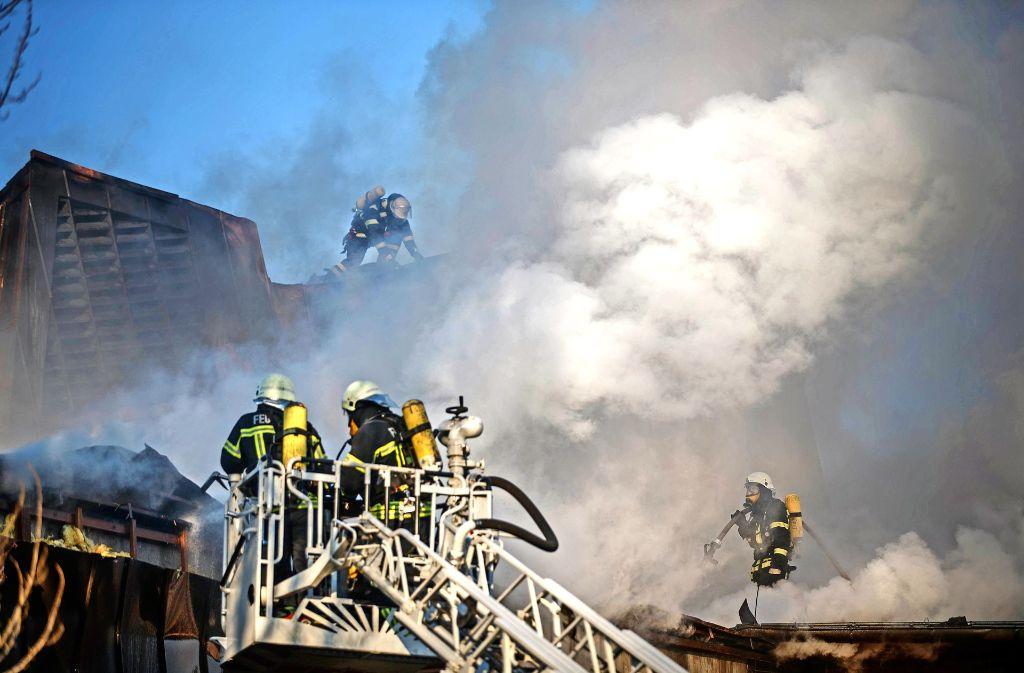 Feuerwehrleute bekämpfen Brandnester, die unter dem Dach des Bürgerzentrums bis zum Nachmittag schwelten. Foto: Gottfried Stoppel