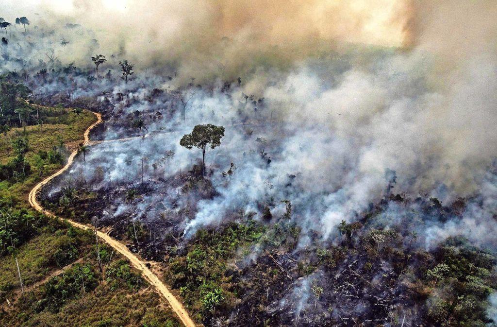 73000 Waldbrände hat das brasilianische Weltraumforschungsinstitut INPE seit Januar gezählt. Im Vergleichszeitraum 2018 waren es rund 40000. Foto: AFP