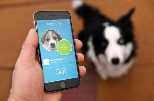Per App hilfsbedürftigen Vierbeinern Futter spenden