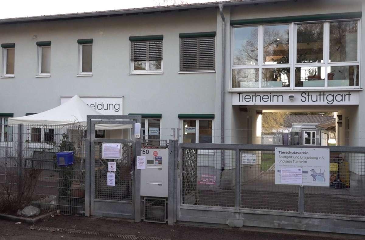 Das Tierheim Stuttgart muss mehr als 100 Tiere zusätzlich versorgen. Sie stammen allesamt aus einer Wohnung. Foto: 7aktuell/Andreas Werner