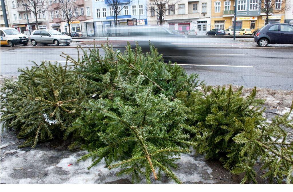 Die Weihnachtsbäume haben jetzt ausgedient. Foto: dpa
