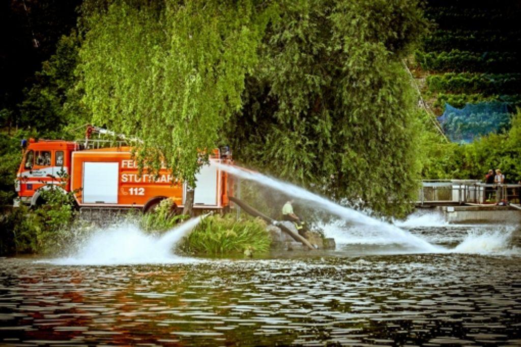 Mit Pumpen belüftet die Feuerwehr seit Mittwoch das Gewässer. Foto: Lg/Achim Zweygarth
