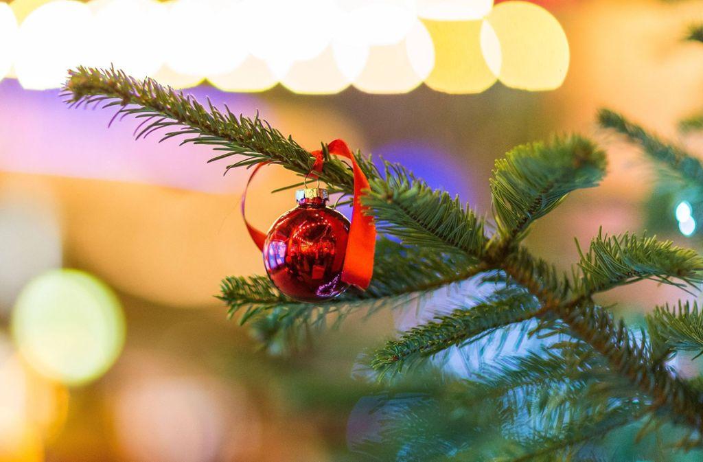 """Von wegen """"fröhliche Weihnacht"""" – in Hattenhofen haben Diebe eine ganz besondere Tanne gestohlen. Foto: imago stock&people"""