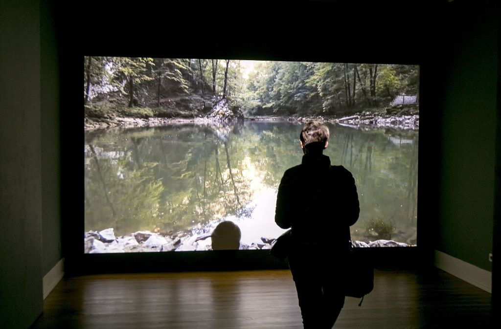 In einem Video durchschwimmt die Künstlerin Lilith Becker einen slowenischen See. Warum das spektakulär ist, erzählt ein zweites Video mit Interviews von Menschen, die in der Nähe des Gewässers wohnen.   Foto: Horst Rudel
