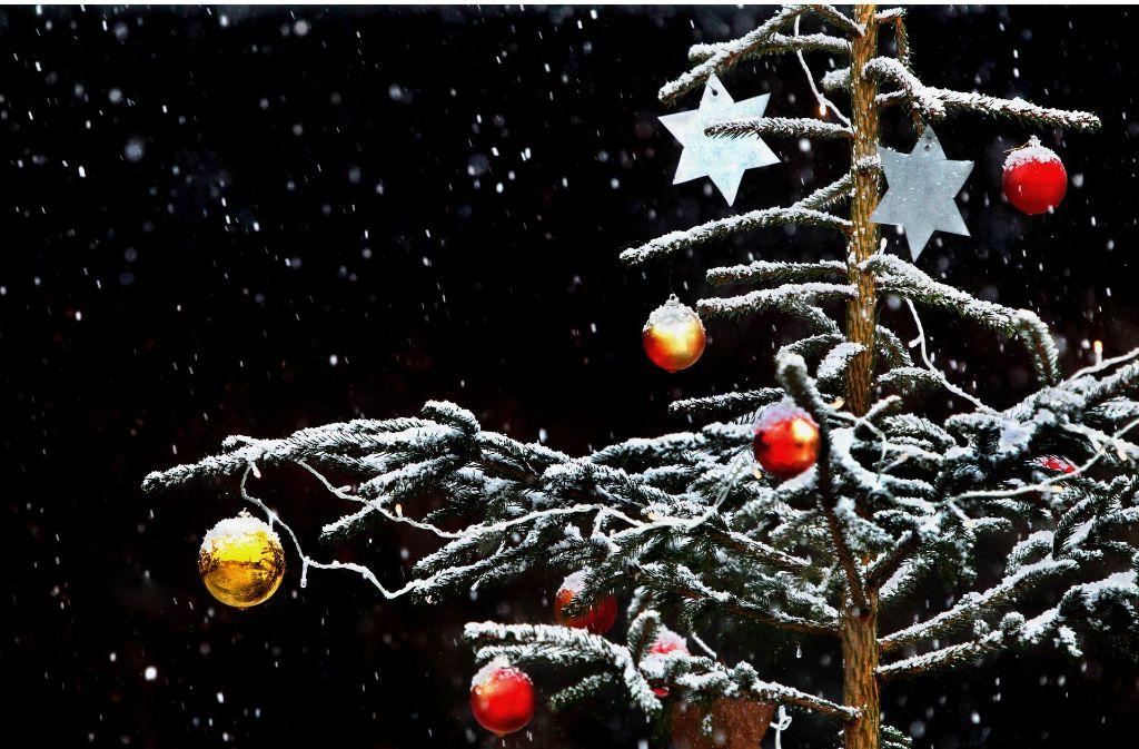 """""""O Tannenbaum, o Tannenbaum, du kannst mir sehr gefallen! Wie oft hat nicht zur Weihnachtszeit ein Baum von dir mich  hoch erfreut!"""" Foto: dpa"""