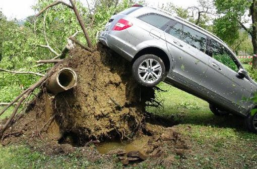 Bäume entwurzelt, Straßen überflutet