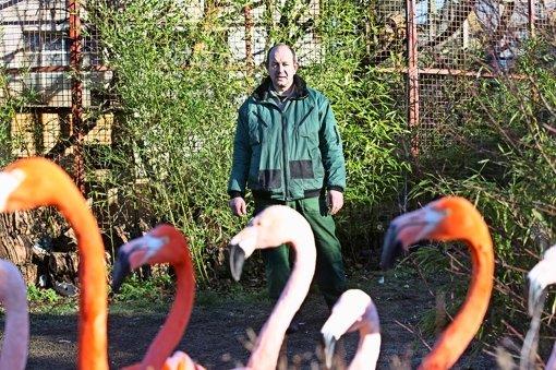 Der Zoodirektor Heiko Eger will endlich den Umbau angehen. Foto: Horst Rudel