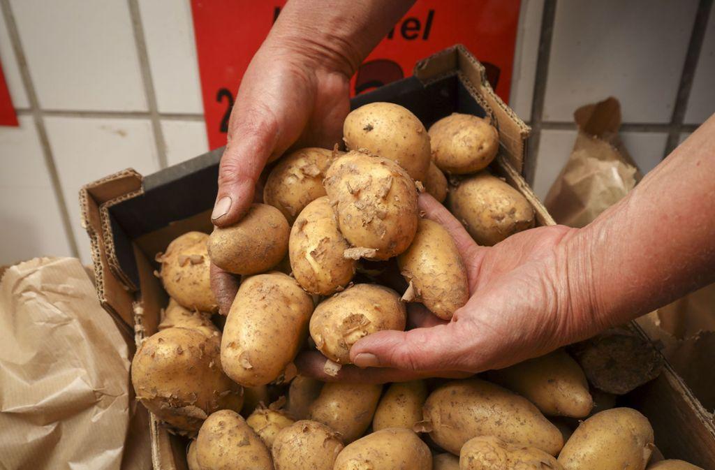 Kartoffeln sind ein beliebtes Grundnahrungsmitteln, haben aber ihre Eigenheiten. Foto: factum/Simon Granville