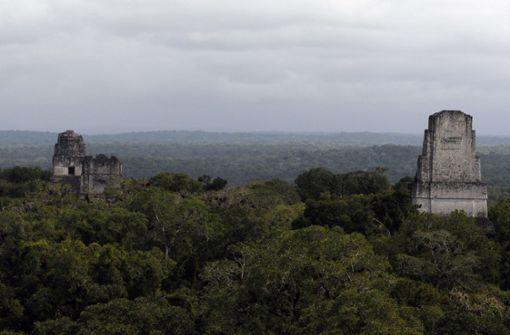 Die Vernichtungskriege der Maya