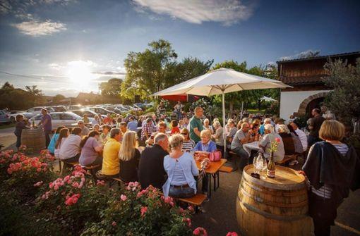 Diese Wein-Events gibt es im  Herbst