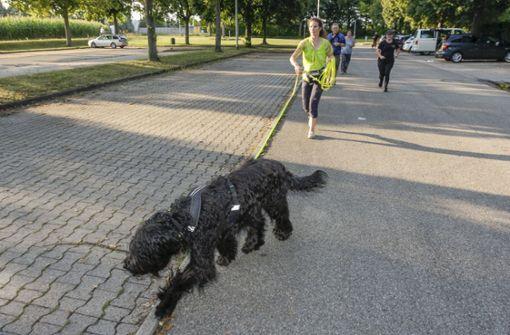 Wenn der Hund sagt, wo es lang geht