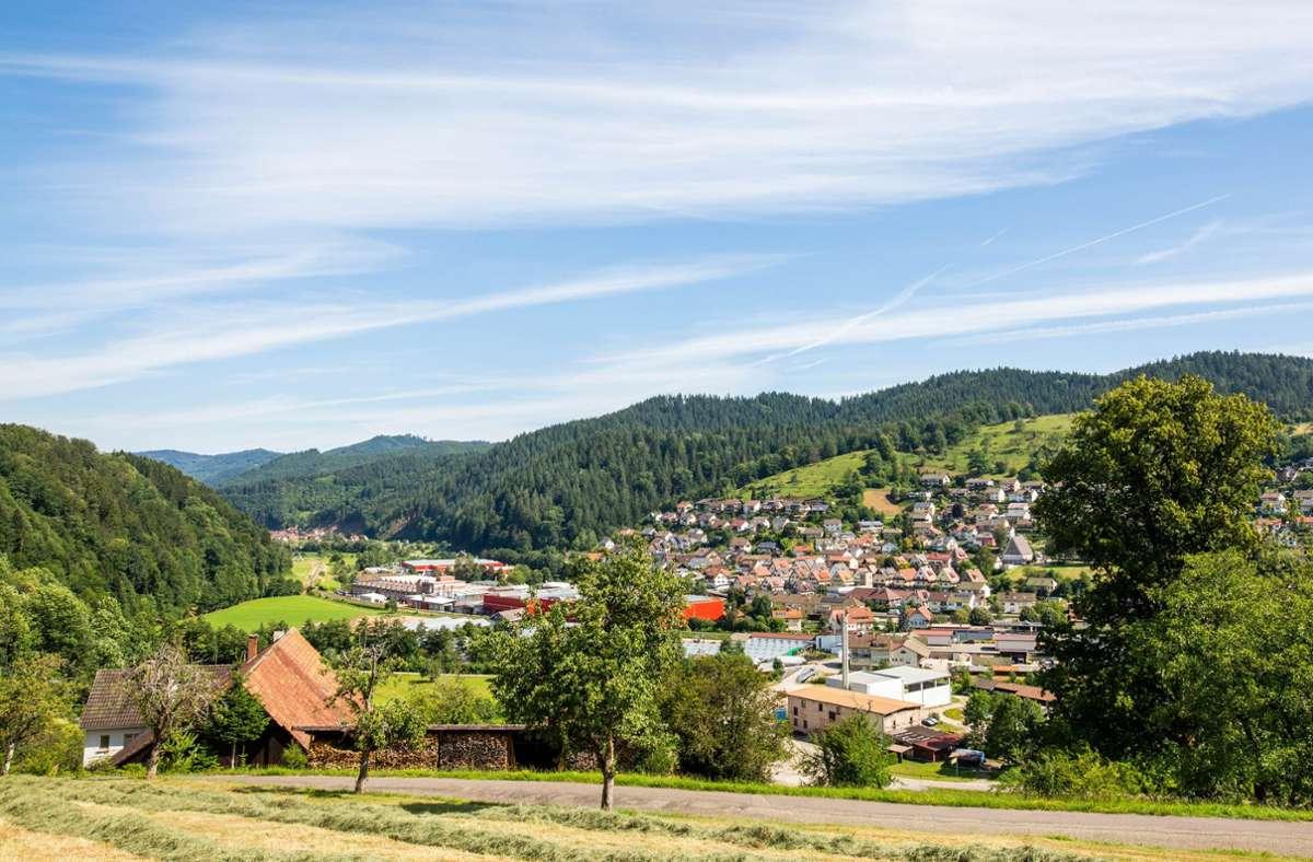 Die Ermittler gehen davon aus, dass der Gesuchte sich in den Wäldern rund um die Stadt Oppenau sehr gut auskennt. Foto: dpa/Philipp von Ditfurth