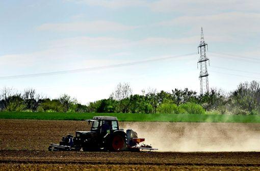 Düsteres Zukunftsbild für Wald und  Landwirtschaft