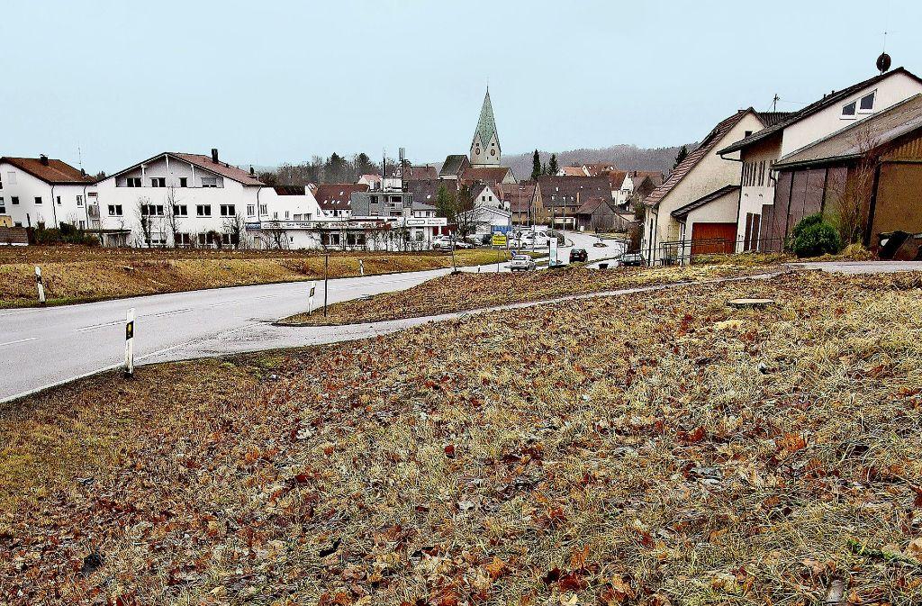 Dies war früher eine Allee. Nun säumen Baumstümpfe die Zufahrtsstraße. Foto: factum/Bach