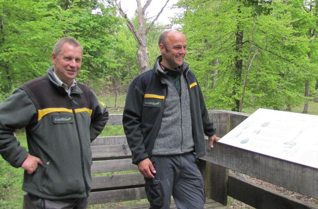 Forstrevierleiter Daniel Berner (rechts) und Forstbezirksleiter Götz Graf Bülow beschreiben die Besonderheiten des Naturschutzgebiets Neuweiler Viehweide. Foto: Claudia Barner