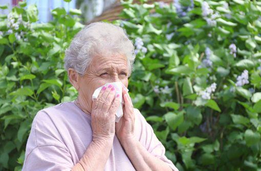 Immer mehr Senioren leiden unter Heuschnupfen