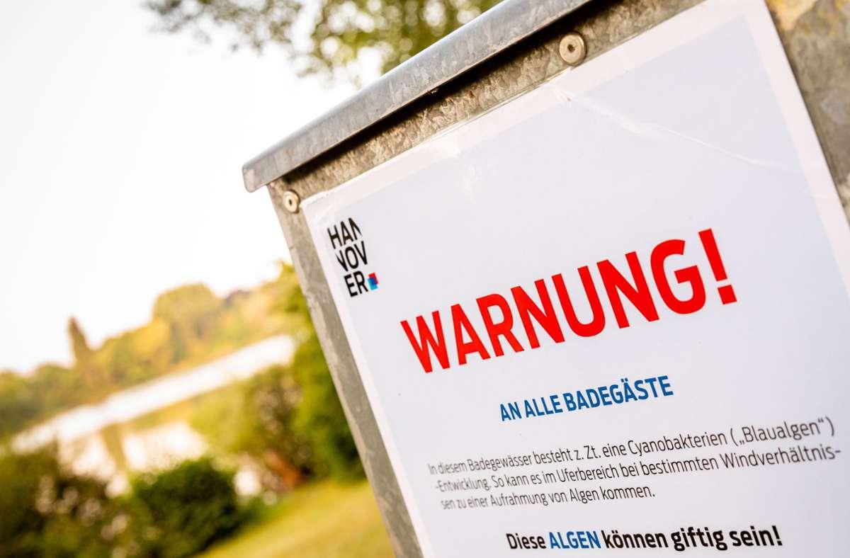 Ein Hinweisschild warnt Badegäste vor Blaualgen im Sieben-Meter-Teich in Hannover. Foto: Moritz Frankenberg/dpa