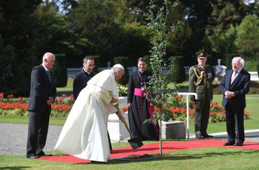 """Papst erkennt Missbrauch als """"schweren Skandal"""" an"""