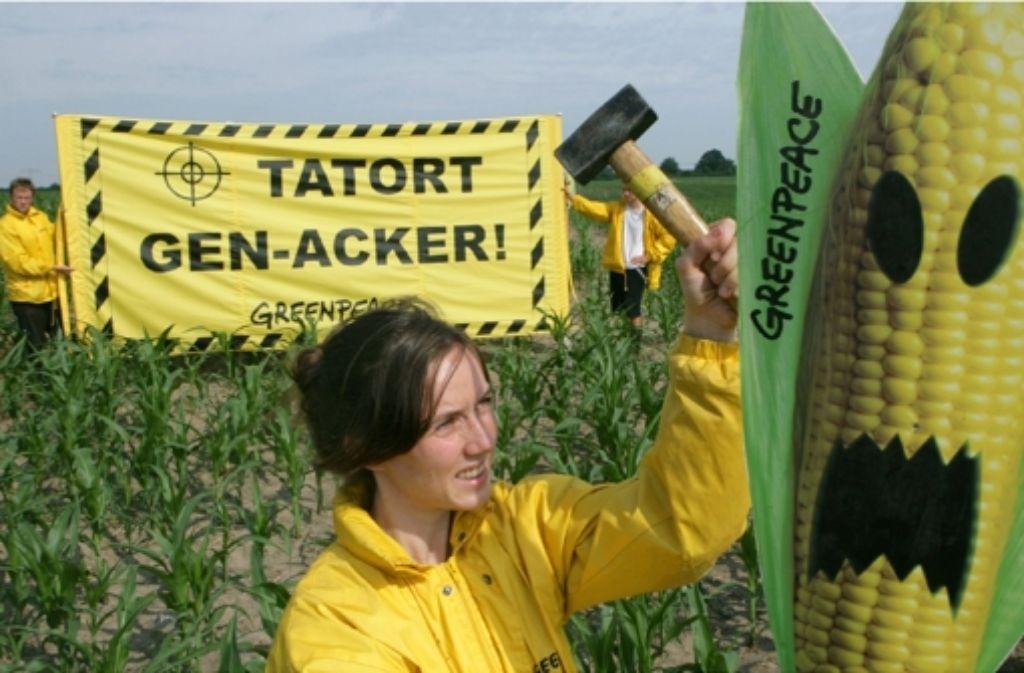 Die grüne Gentechnik gilt vielen Wissenschaftlern als schlechtes Beispiel: Forscher haben hier kaum noch Einfluss auf die öffentliche Debatte. Foto: dpa