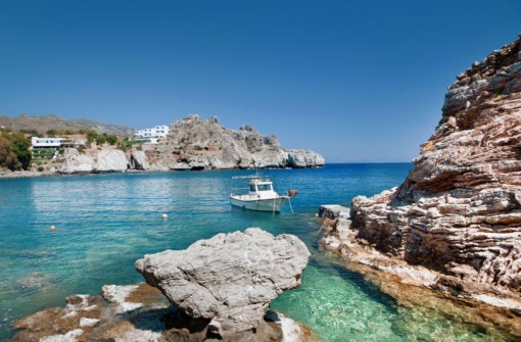 Auf Kreta sorgt ein Krokodil für Aufregung. Foto: picture alliance