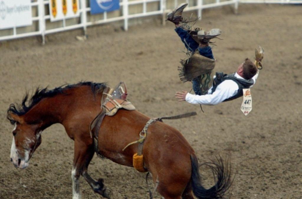 Bei der Stampede fliegt so mancher Cowboy in hohem Bogen vom Pferd. Foto: AP