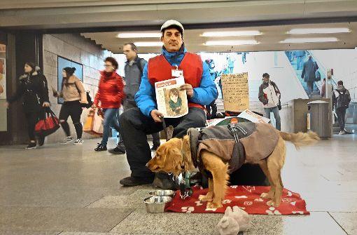 Hunde  in  Winternotquartieren nicht geduldet