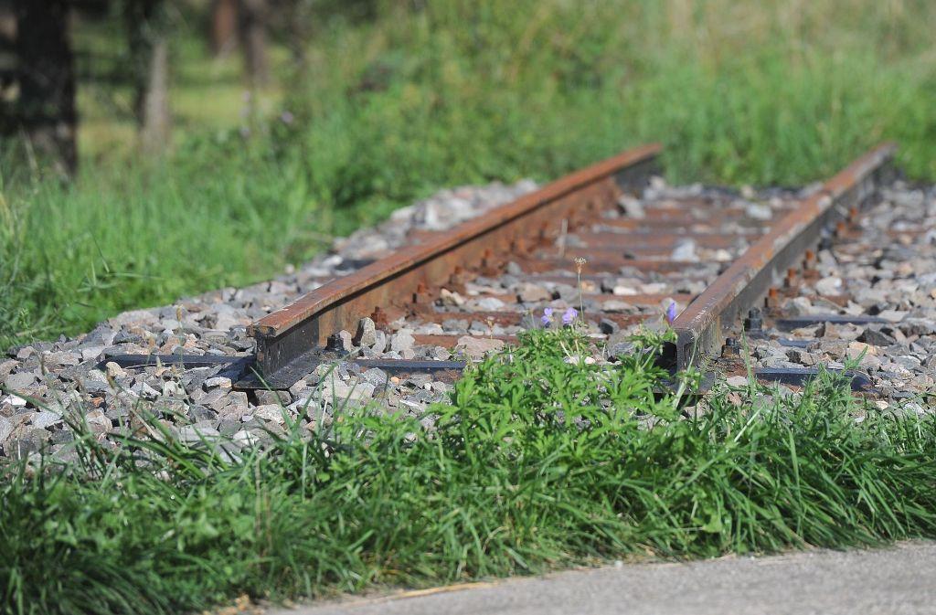 Die Schienen der Bottwartalbahn liegen seit 1990 brach. Foto: Werner Kuhnle
