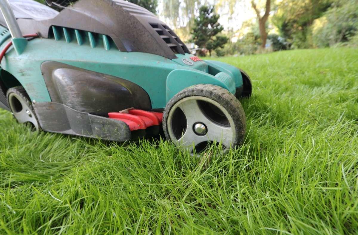 Der Rasenmäher sollte nicht mehr als die Hälfte der Halme auf einmal abschneiden. Foto: Nestor Bachmann/dpa