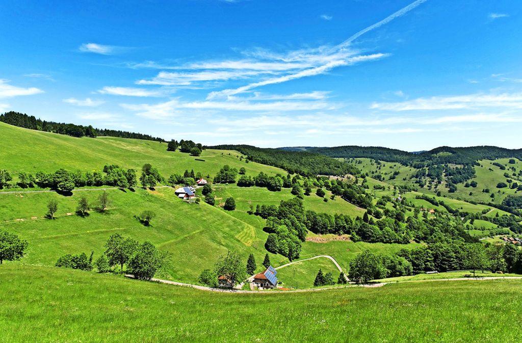In manchen Teilen der Schwarzwaldgemeinde Wieden ist Telefonieren nur per Festnetz möglich. Die Kommune ist eine von knapp 40 in Baden-Württemberg, die sich bei einer Aktion der Telekom beworben haben. Foto: dpa/Patrick Seeger