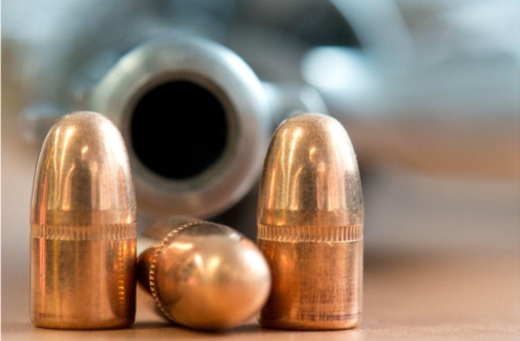Die Munition  lag in einem Gebüsch neben der Bühleiche. Foto: dpa