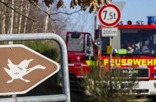 12.900 Tiere in Bayern getötet