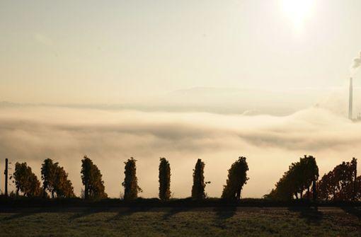 Erst hartnäckiger Nebel, dann Sonne