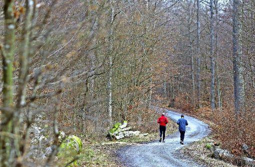 Niemand will Wald für eine Deponie opfern